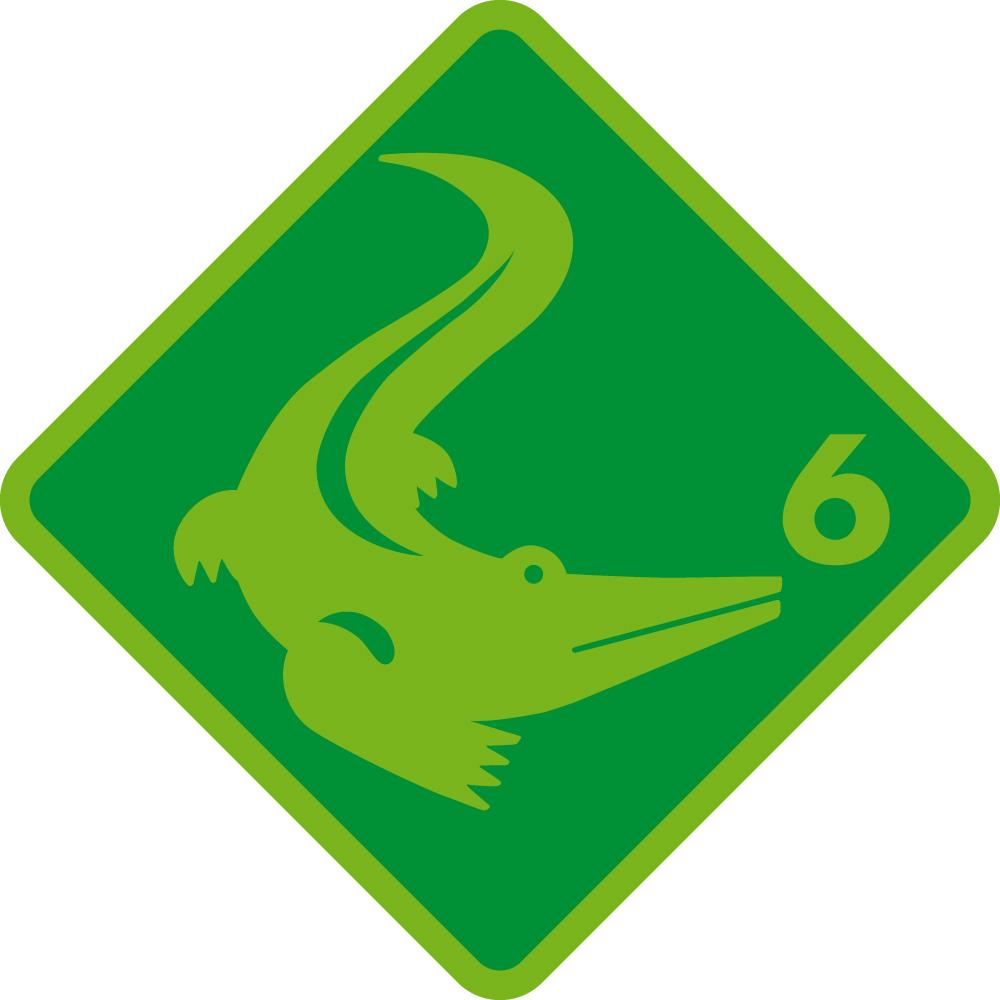 Krokodil Schwimmabzeichen