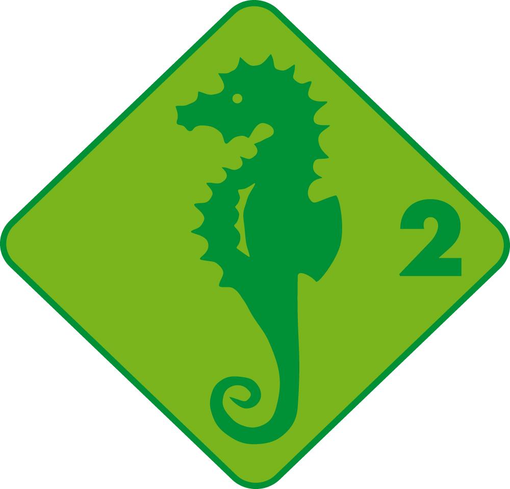 Seepferd Schwimmabzeichen
